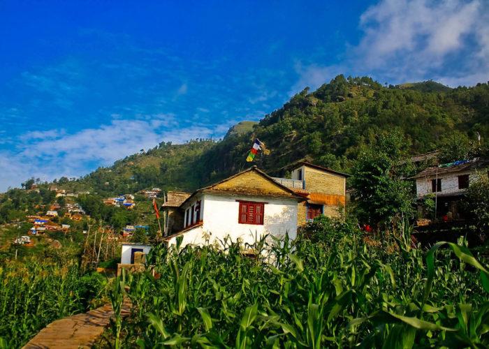 Sirubari Village Homestay