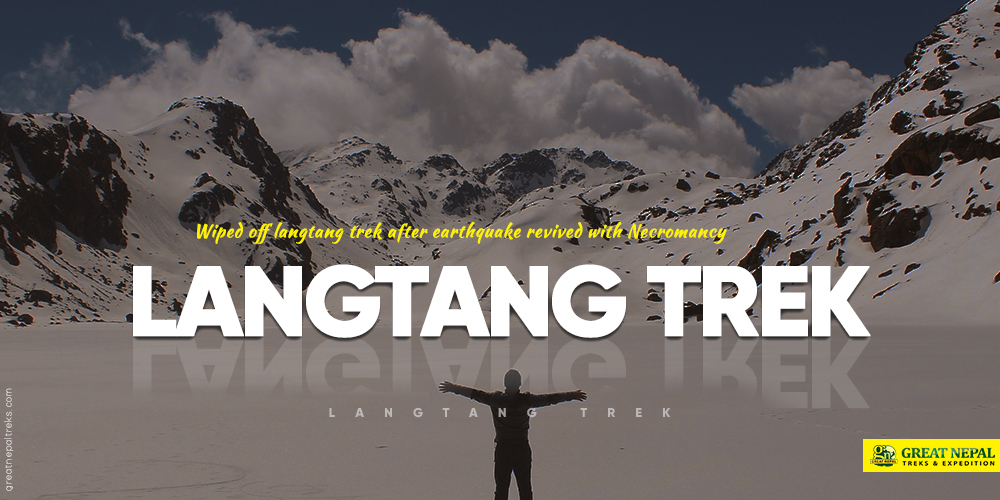 langtang trek after earthquake