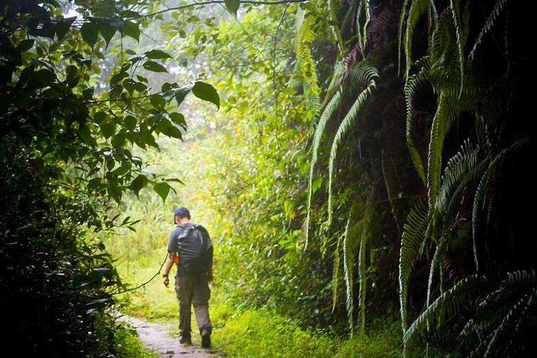 Chisapani hiking trails