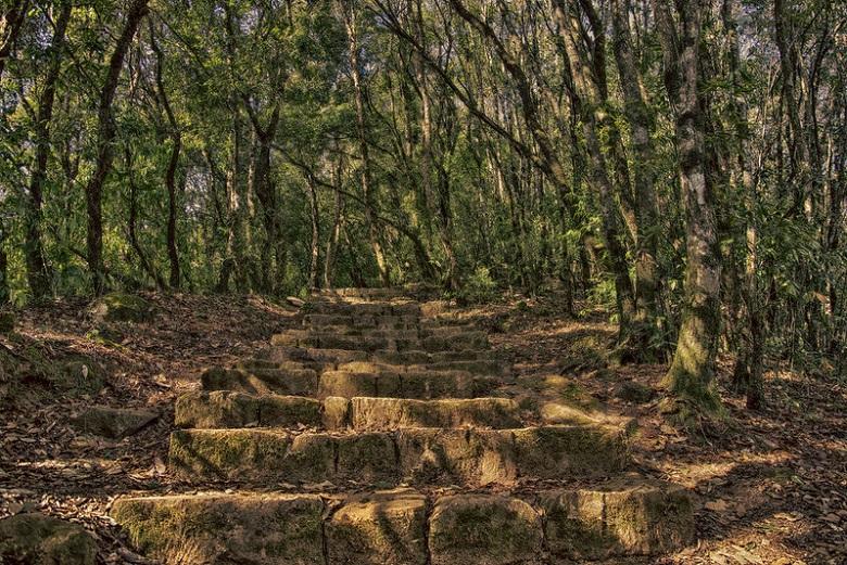 Nagarjun hiking trails